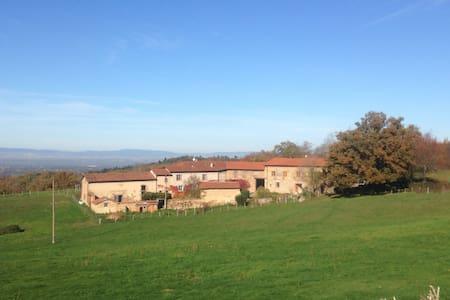 La Pimpignole = la coccinelle - Saint-Galmier - Σπίτι