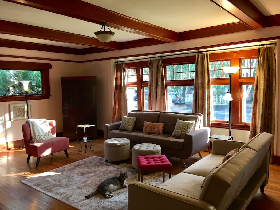 Living room where you can relax