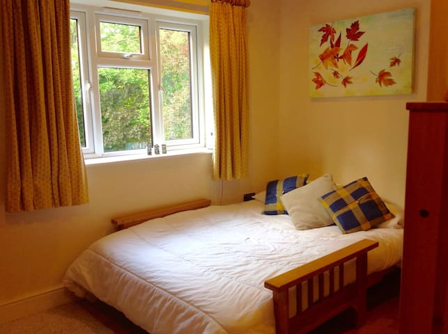 Spacious ensuite room close to Salisbury centre - Salisbury - Dům