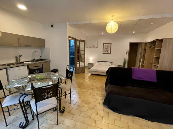 Spacious studio with patio in the center of Roanne