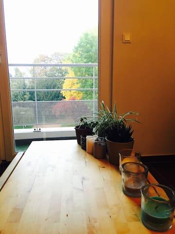 Charmant appartement 2 pièces - Thionville - Daire