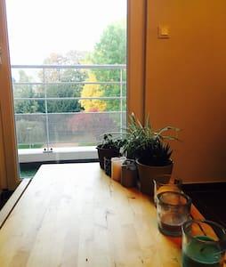 Charmant appartement 2 pièces - Thionville - Leilighet