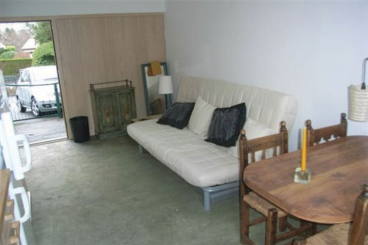 Studio with garden near lake - Collonge-Bellerive - Apartment