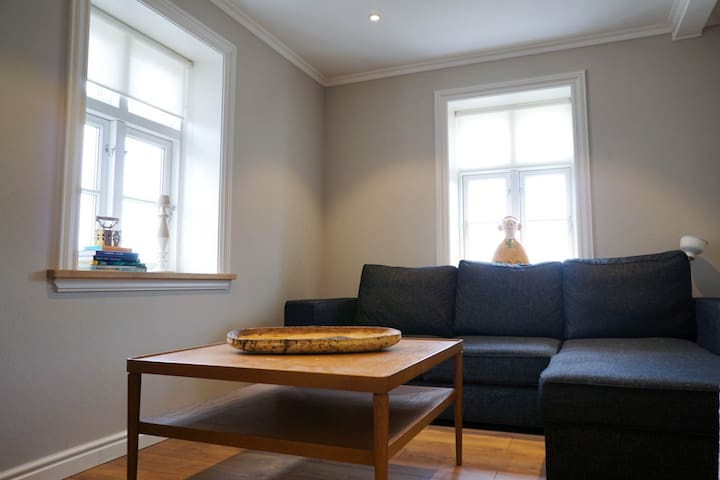 Secondary Room with a pull out couch