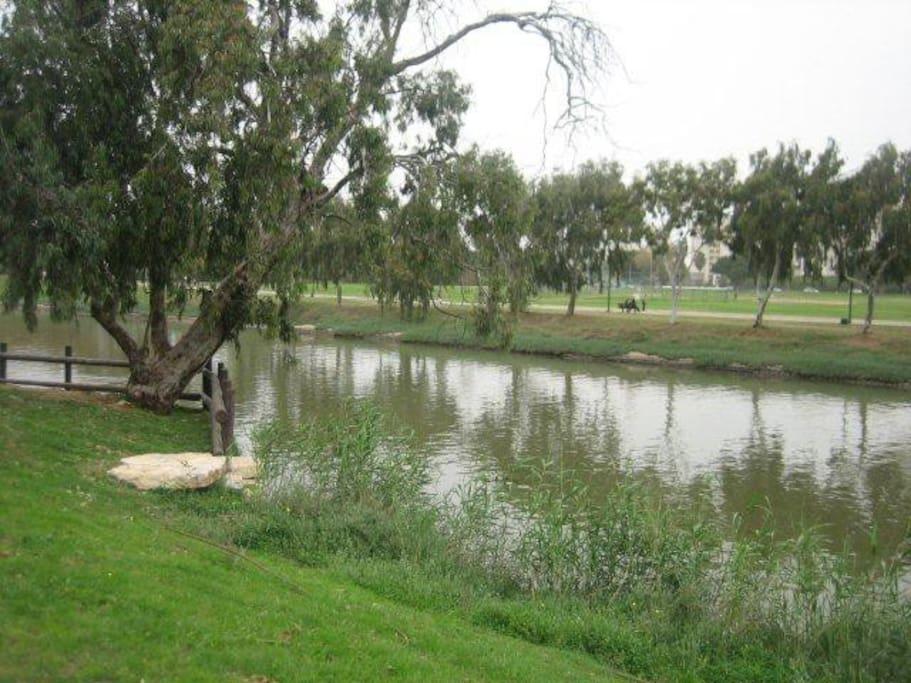 Yarkon Park (Yarkon river)