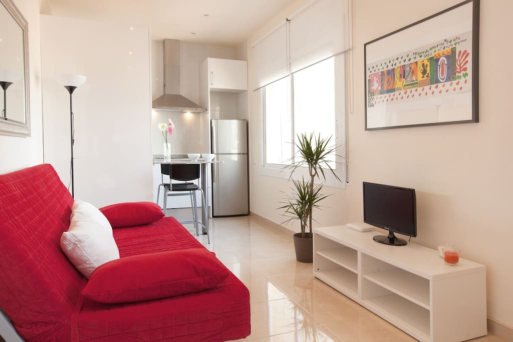 Cosy And Modern 1 Bedroom Ramblas Apartments For Rent In Barcelona Catalunya Spain