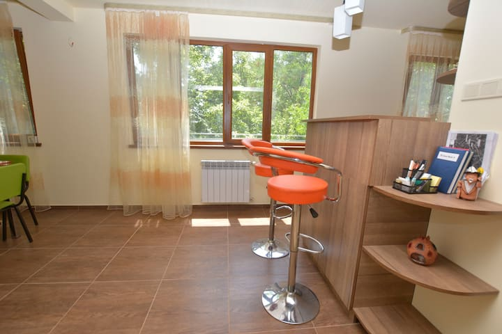 Vernisaj 2 bedr. apt at Rep. Square - Yerevan - Appartement