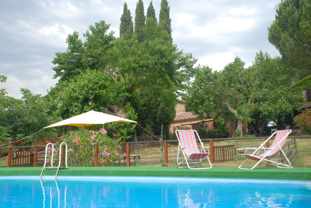 The swimming pool in summer