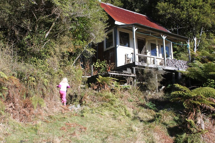 Tom's Hut, MANZONI, Kawhaka Valley. - Kawhaka Valley