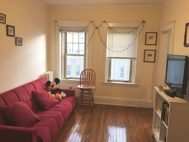 Private, amazing 1-bedroom apt in central location