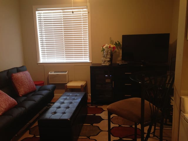 Beautiful Downtown One Bedroom - Grand Junction - Apartmen