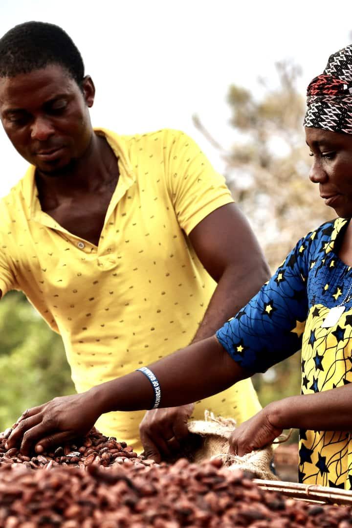 Women cacao farmers