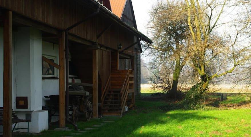 Agroturystyka Stary Młyn - Wilczkowice - Outro