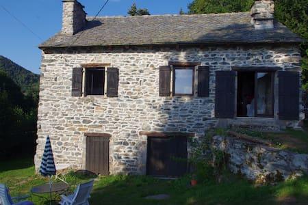 Nice farm in authentic Auvergne - Saint-Julien-Chapteuil