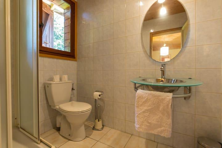 Le mazot en suite shower room