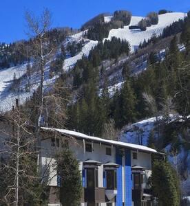 St Moritz - Shared Male Hostel / Shared Bathroom - Aspen - Dorm