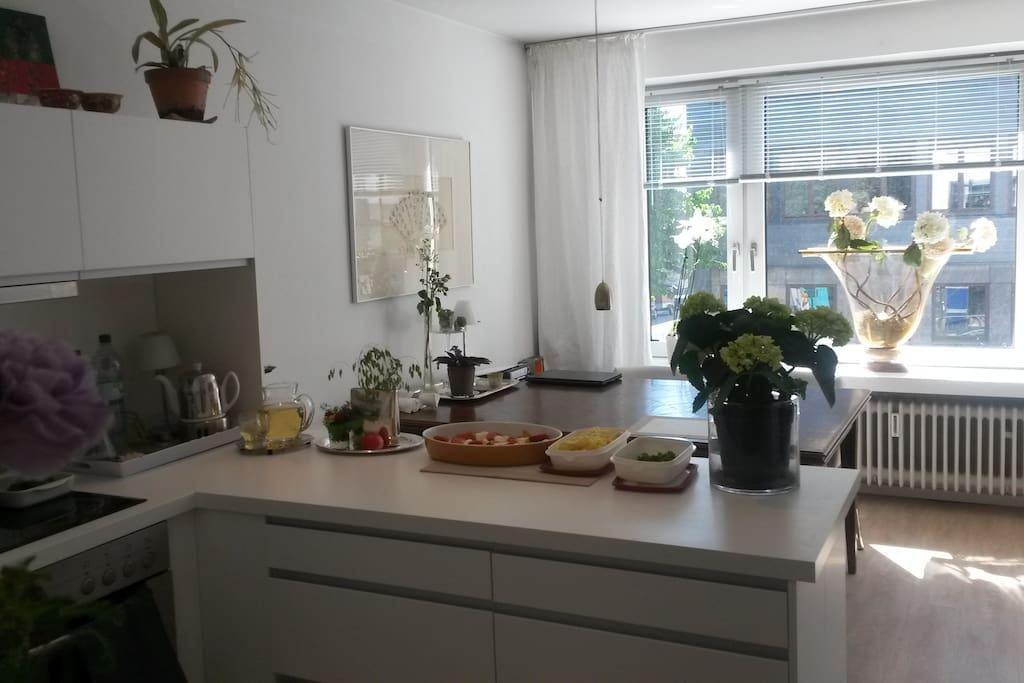 Offene Küche mit großen Esstisch