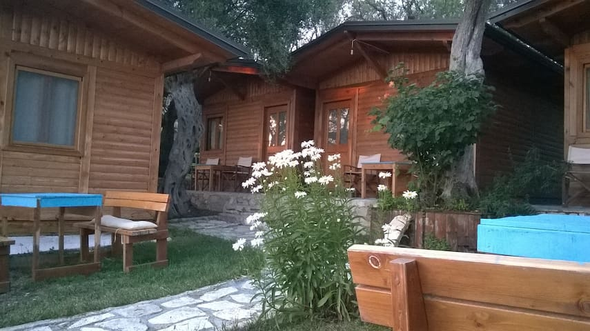 Filoxenia Holiday - Himarë - Bed & Breakfast