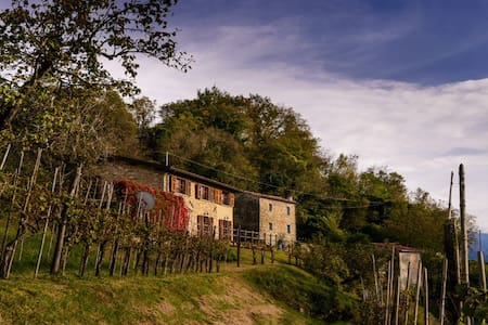 A Lovely Villa with Valley Views, and Vineyard - Bigliolo