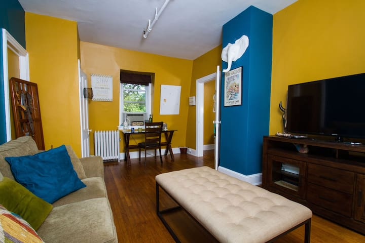 Prime Location! Charming-Colorful-Walk Everywhere! - Princeton - Byt