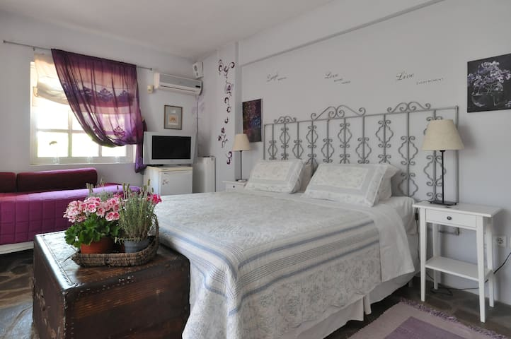 St. Thomas B & B-The Wisteria Room - Athen