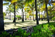 The residence garden is full of immense coconut trees give the place a unique charm