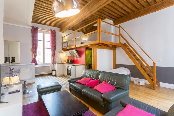 le loft des canuts appartements louer lyon rh ne. Black Bedroom Furniture Sets. Home Design Ideas