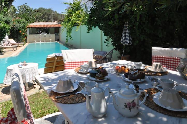 Olive Grove Villa - Athens - Villa