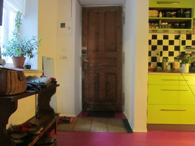 Cozy flat in the old polish house - Lwów - Apartament