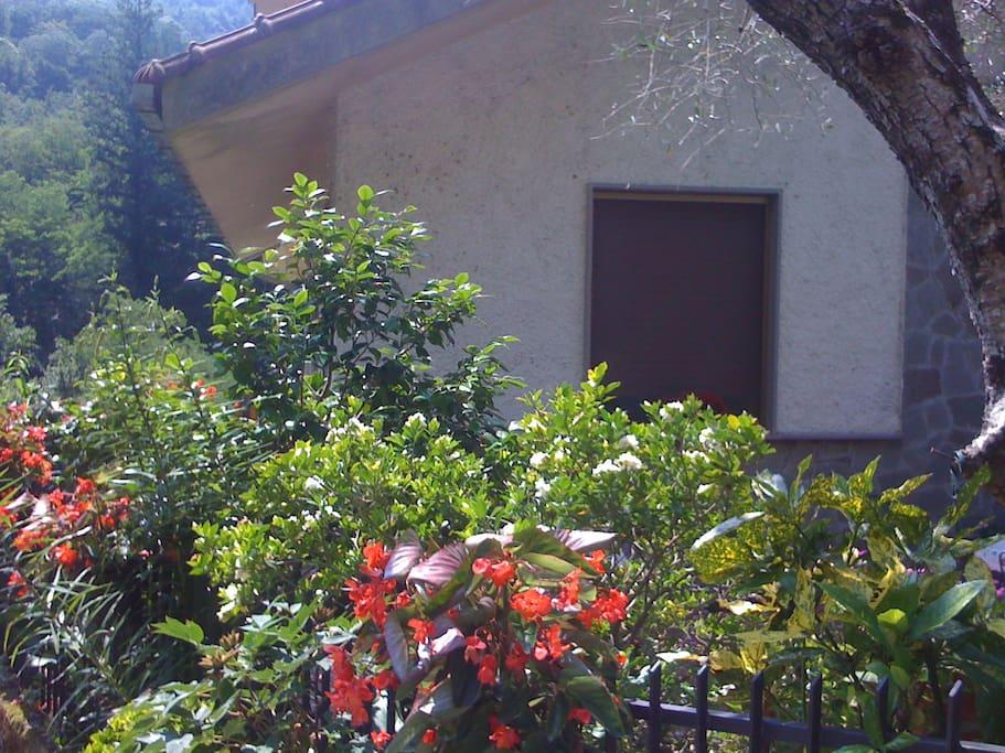 Entrance to Casa Marvi