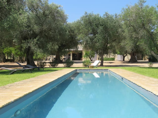 Villa in old olive grove with pool
