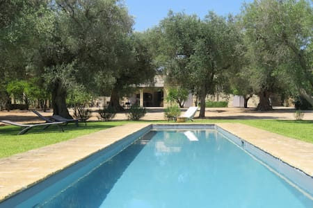 Villa in old olive grove with pool - Miggiano