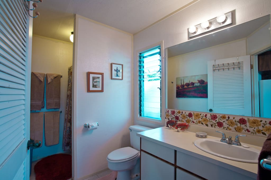 Typical private bath, lavatory sink with privacy door