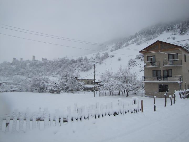 Guest House Saba 3