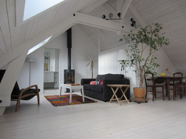Charming loft-style studio, spacious, very bright. - Chartres - Lejlighed