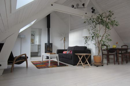 Charming loft-style studio, spacious, very bright. - Chartres - Appartamento