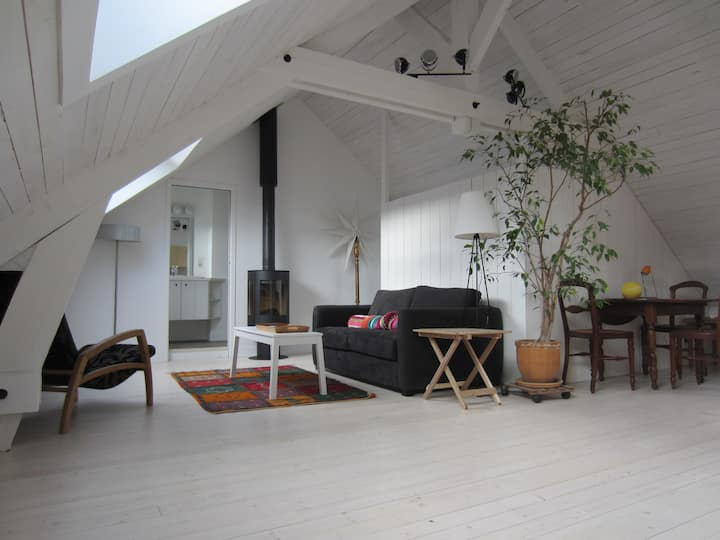 Charming loft-style studio, spacious, very bright.