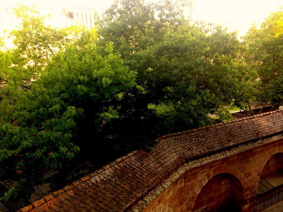 Ausblick auf die historische Stadtmauer
