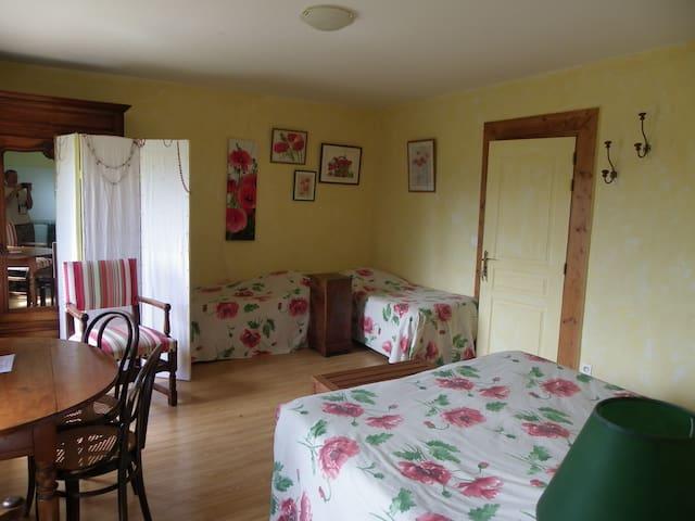 La Verrière chambre de Tante Alice - Les Ardillats - ที่พักพร้อมอาหารเช้า