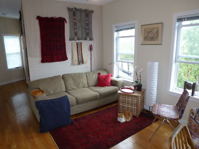 Sunny Centrally Located Single - Somerville - Apartamento
