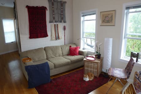 Sunny Centrally Located Single - Somerville - Departamento