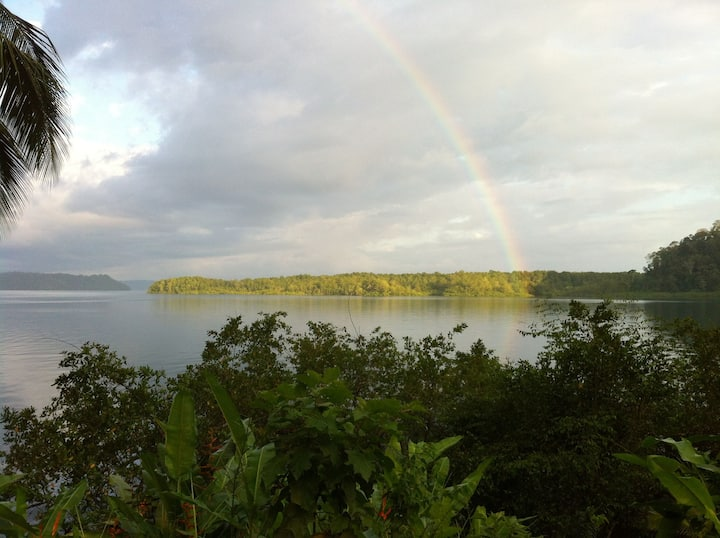 Rainforest paradise @ Osa Peninsula