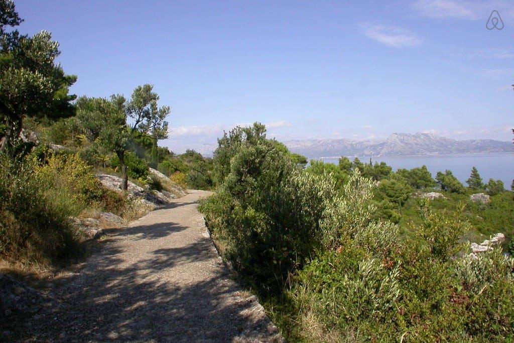 Part of 1.5km long promenade along the sea side in Trpanj!