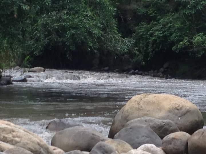 No Solo Río / Maloca