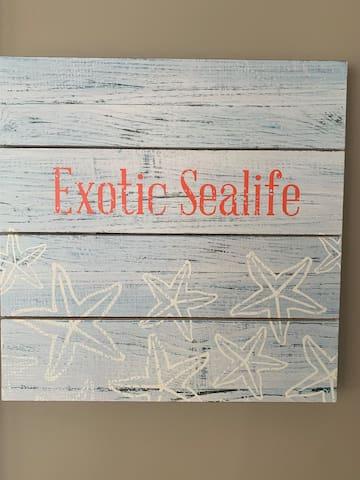 3rd Bedroom - Exotic Sealife (2nd floor)