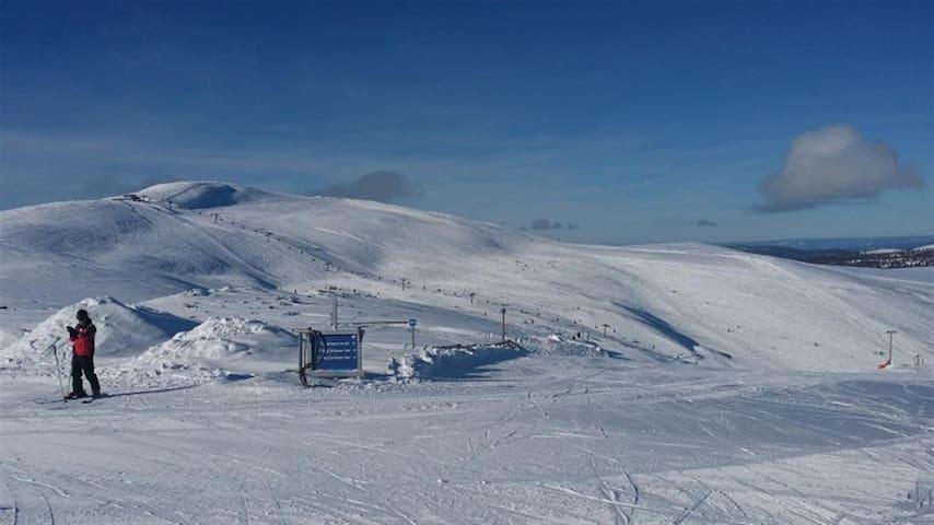 Ski-inn/Ski-out - sentralt i Trysil Turistsenter!
