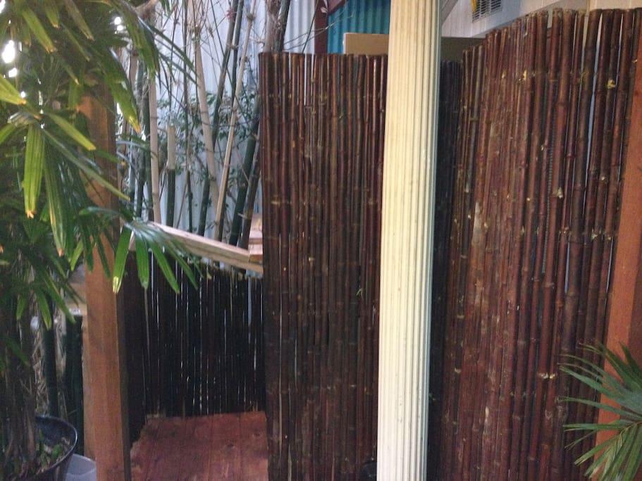 Hiddencabin Fullbath Outdoor Shower Walk To It All Guest