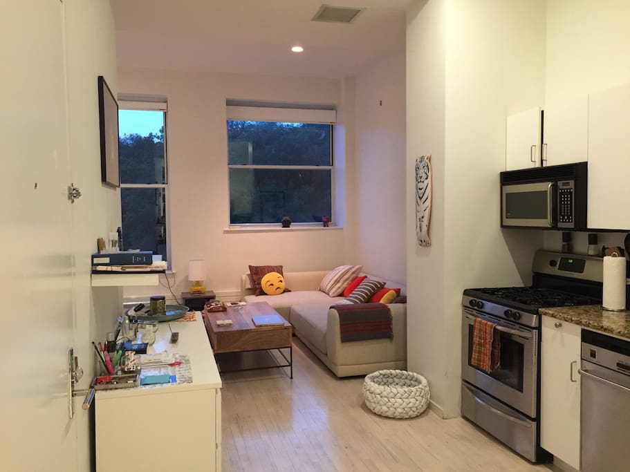 Spacious Luxury Loft Downtown Nyc Condominiums For Rent