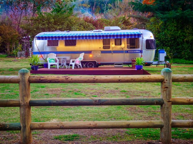 Airstream Caravan - unique! - Bright - Trailer