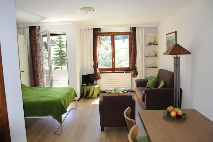 Wohnung mit Balkon in Andermatt - Andermatt - Apartment